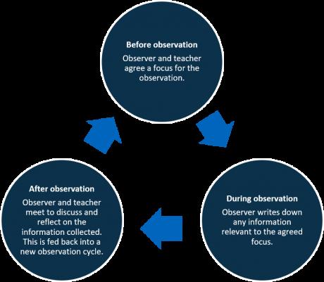 peer-observation-cycle